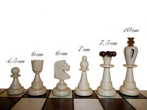 Шахматы с шашками